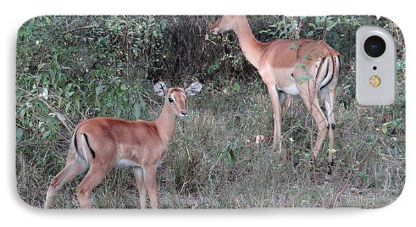 Africa - Animals In The Wild 2 IPhone Case by Exploramum Exploramum