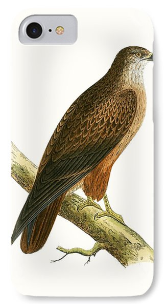 African Buzzard IPhone 7 Case by English School
