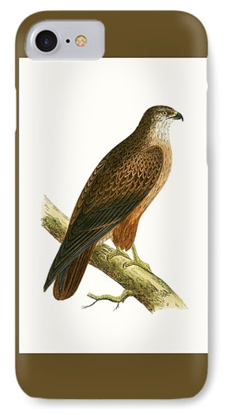 African Buzzard IPhone Case by English School