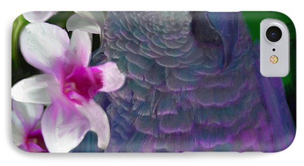 African Grey  IPhone Case by Julianne  Ososke