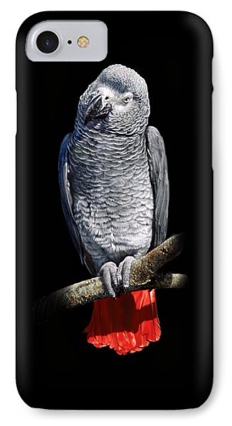 African Grey Parrot C Phone Case by Owen Bell