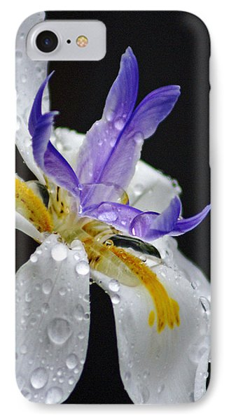 African Iris IPhone Case by Holly Kempe