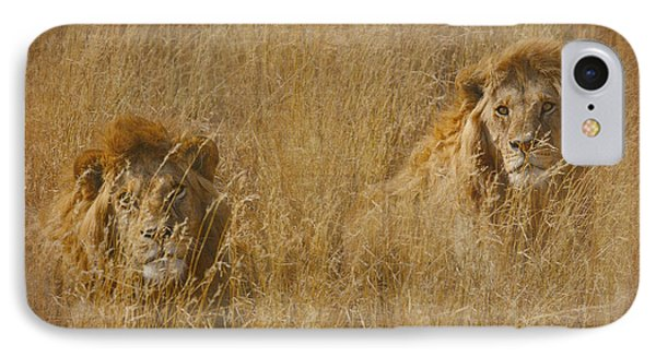 IPhone Case featuring the tapestry - textile African Lion Brothers by Kathy Adams Clark
