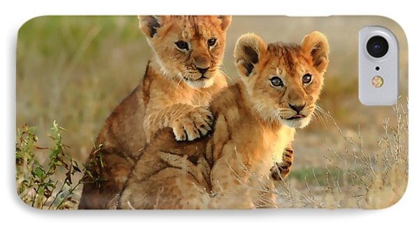 African Lion Cubs IPhone Case by Maciek Froncisz