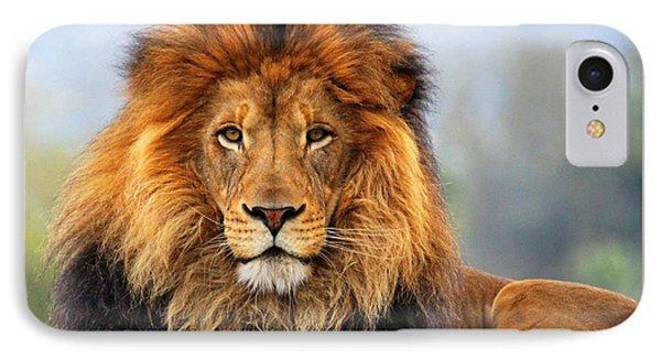 African Lion 1 IPhone Case by Ellen Henneke