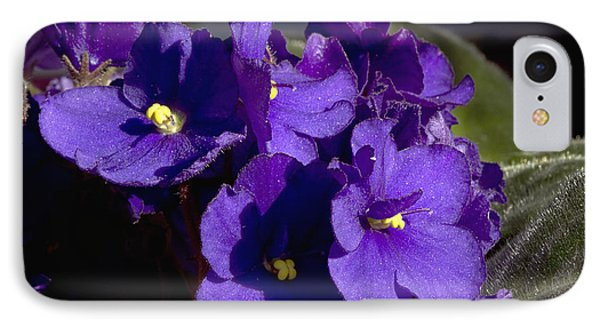 IPhone Case featuring the photograph African Violets by Phyllis Denton