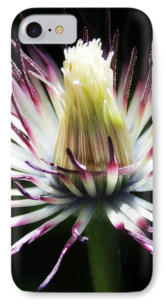 After The Petals Are Gone IPhone Case by Anita Faye