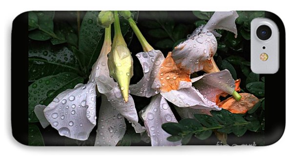 After The Rain - Flower Photography IPhone Case by Miriam Danar
