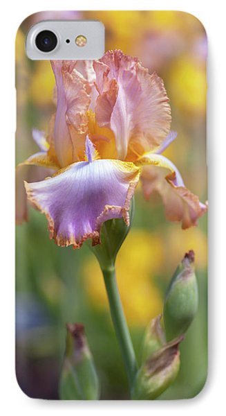 Afternoon Delight. The Beauty Of Irises IPhone Case