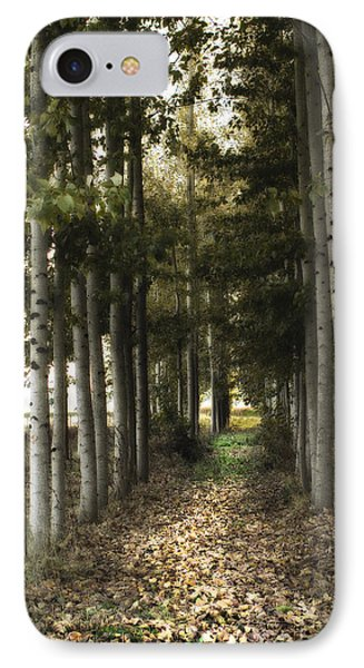 Afternoon Stroll IPhone Case by Rebecca Cozart
