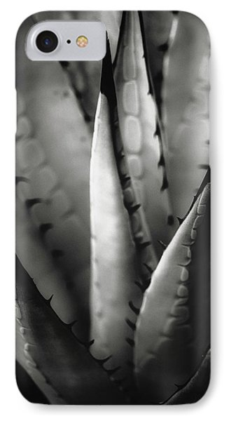 Agave And Patterns IPhone Case by Eduard Moldoveanu