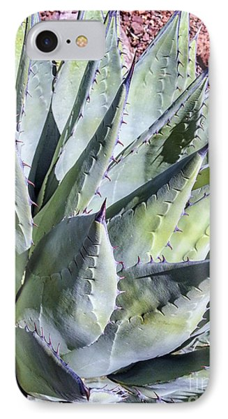 Agave IPhone Case by Anthony Citro