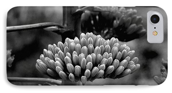 IPhone Case featuring the photograph Agave Buds by Vicki Pelham