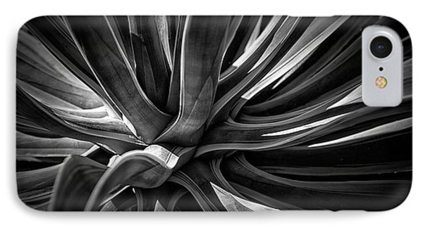 Agave Burst IPhone Case by Lynn Palmer