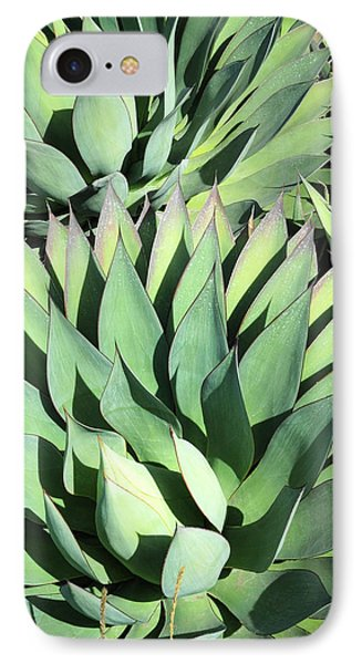 IPhone Case featuring the photograph Agave by Catherine Lau
