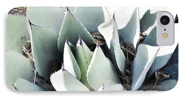 IPhone Case featuring the photograph Agave Plant Leaves by Andrea Hazel Ihlefeld