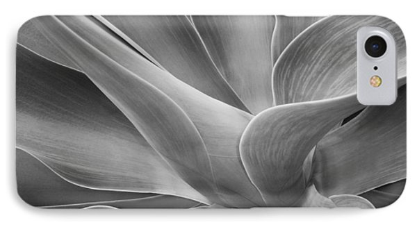 Agave Shadows And Light IPhone Case