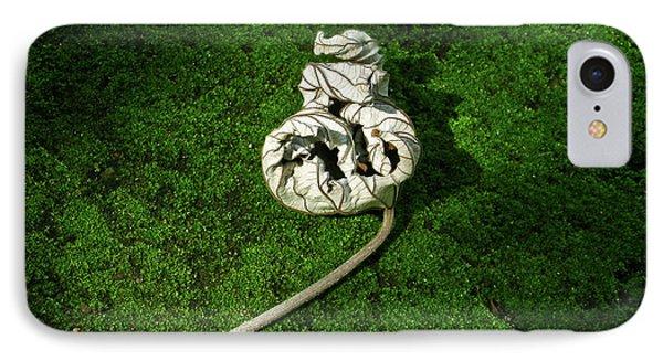 Aguished Leaf Phone Case by Douglas Barnett