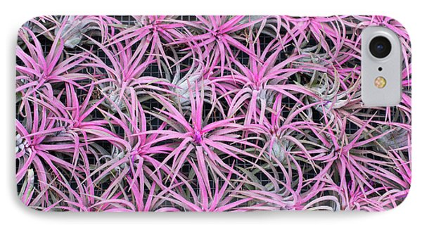 Airplants IPhone Case by Tim Gainey