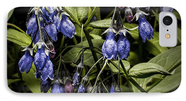 Alaskan Bluebell IPhone Case