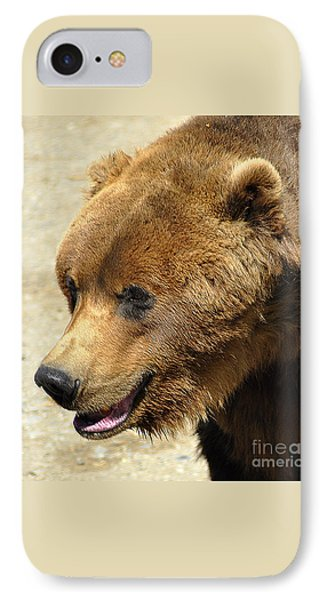IPhone Case featuring the photograph Alaskan Brown Bear by Diane E Berry