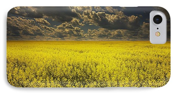 Alberta, Canada A Canola Field Under IPhone Case