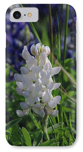 Albino Bluebonnet IPhone Case by Robyn Stacey
