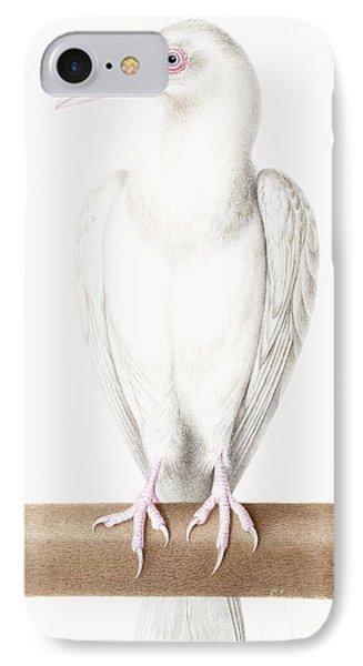 Albino Crow IPhone 7 Case by Nicolas Robert