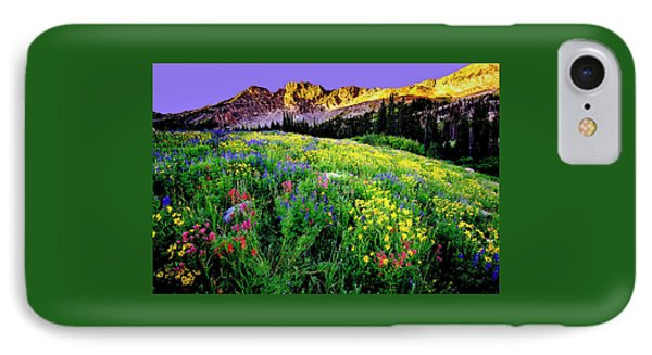 Albion Meadows IPhone Case