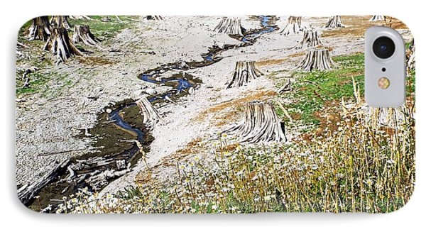 IPhone Case featuring the photograph Alder Lake Stumps by Joseph Hendrix