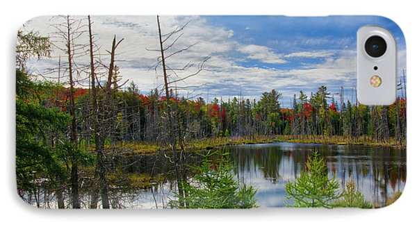 Algonquin In Autumn IPhone Case by Irwin Seidman