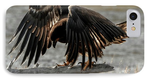 All Feathers IPhone Case