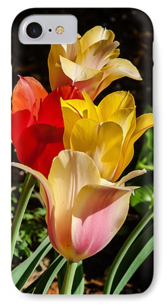 All In A Pretty Row IPhone Case by Jim Moore