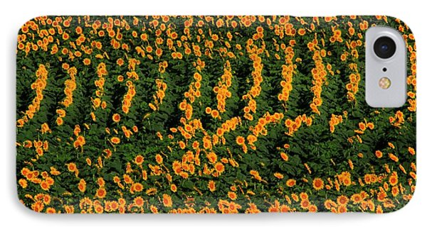IPhone Case featuring the photograph All In A Row by Chris Berry