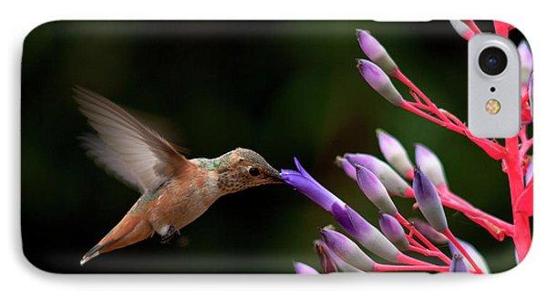 Allen's Hummingbird At Breakfast Phone Case by Mike Herdering
