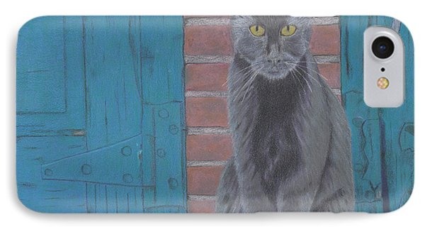 Alley Cat IPhone Case by Arlene Crafton