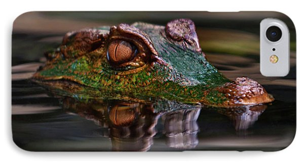 Alligator Above Water Reflection IPhone Case by Loriannah Hespe