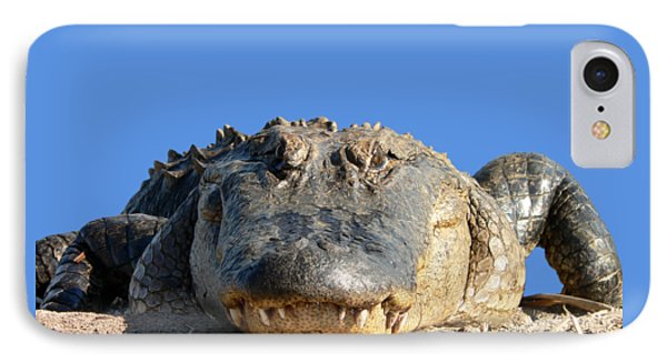 IPhone Case featuring the photograph Alligator Approach .png by Al Powell Photography USA