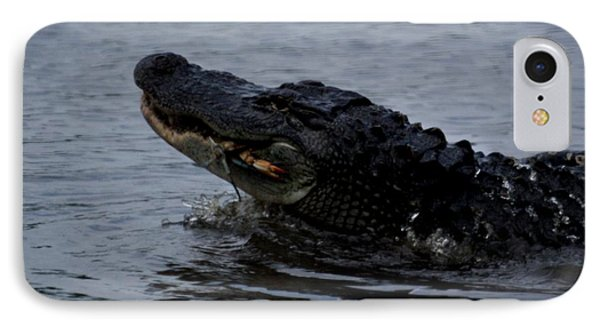 Alligator Eating A Crab IPhone Case