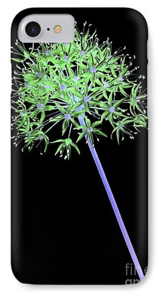 Allium 2 On Black IPhone Case by Tony Cordoza