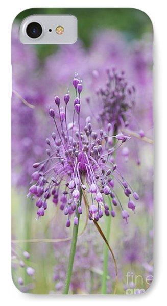 Allium Carinatum Flowering IPhone Case by Tim Gainey