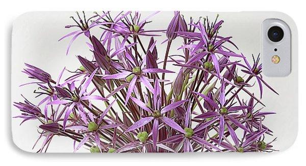 Allium Christophii Star Of Persia IPhone Case