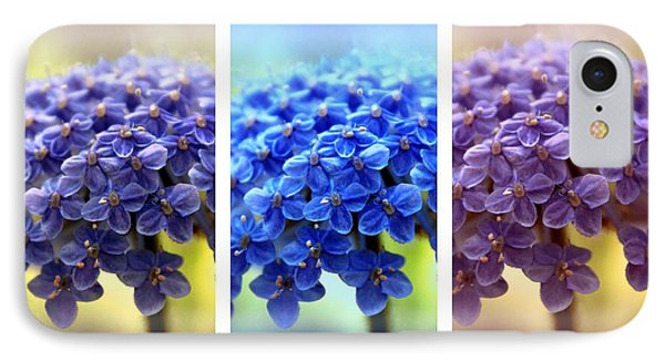 Allium Triptych IPhone Case by Jessica Jenney