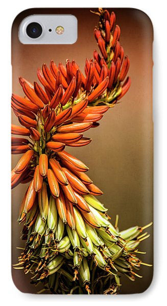 IPhone Case featuring the photograph Aloe Vera Twist  by Saija Lehtonen