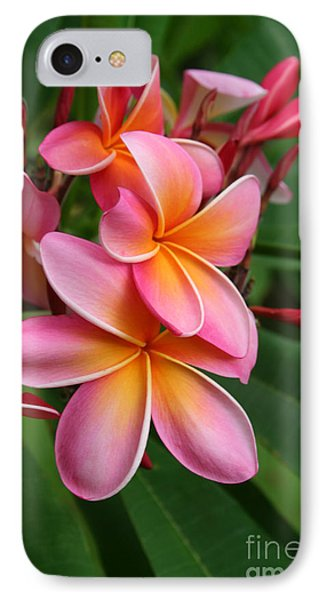 Aloha Lei Pua Melia Keanae IPhone Case by Sharon Mau