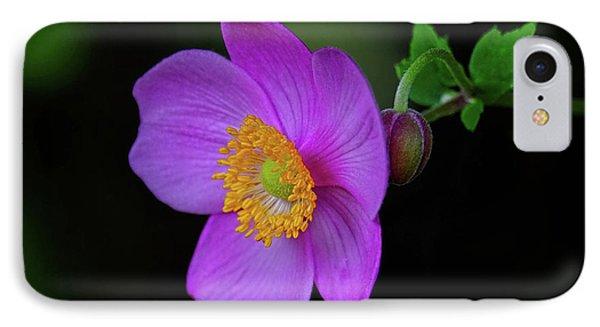 Anenome Purple IPhone Case by Ronda Ryan
