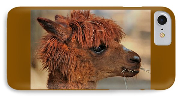 Alpaca Portrait IPhone Case