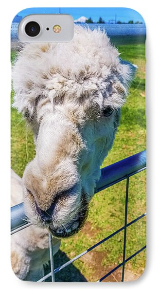 Alpaca Yeah IPhone Case