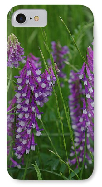 Alpine Vetch 1 IPhone Case by Robyn Stacey