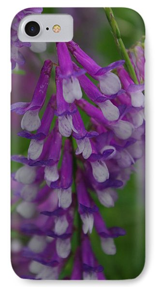 Alpine Vetch 2 IPhone Case by Robyn Stacey